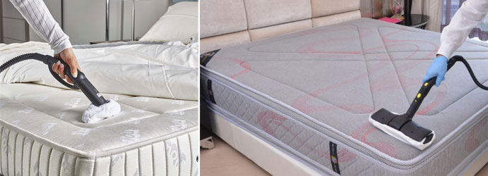 Professional Mattress Cleaning Charmhaven