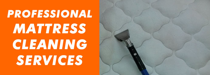 Professional Mattress Cleaning Services Long Flat