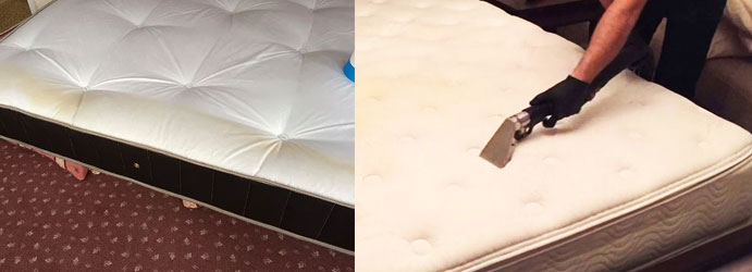 Mattress Cleaning Services Mount Pleasant