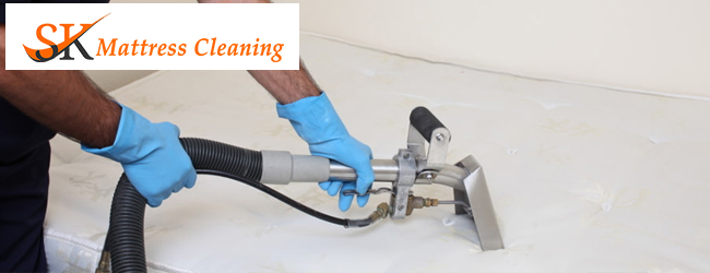 Professional Mattress Cleaner