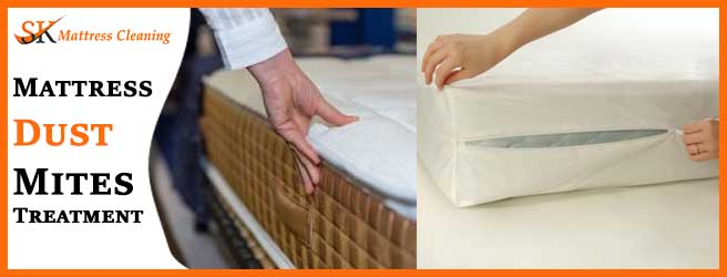 Mattress Dust Mites Treatment